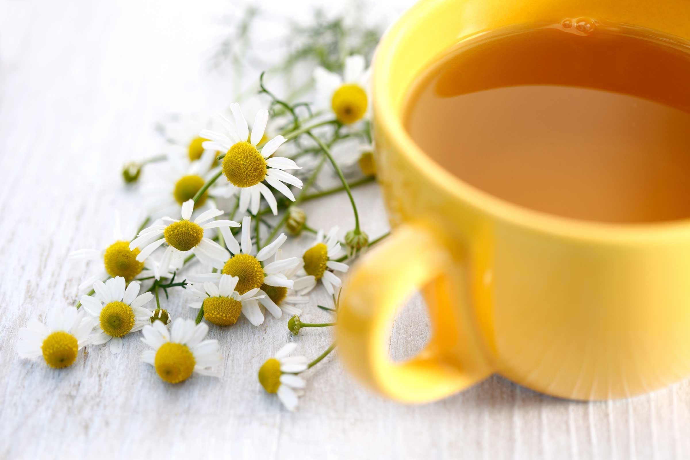 Calm the burn with chamomile