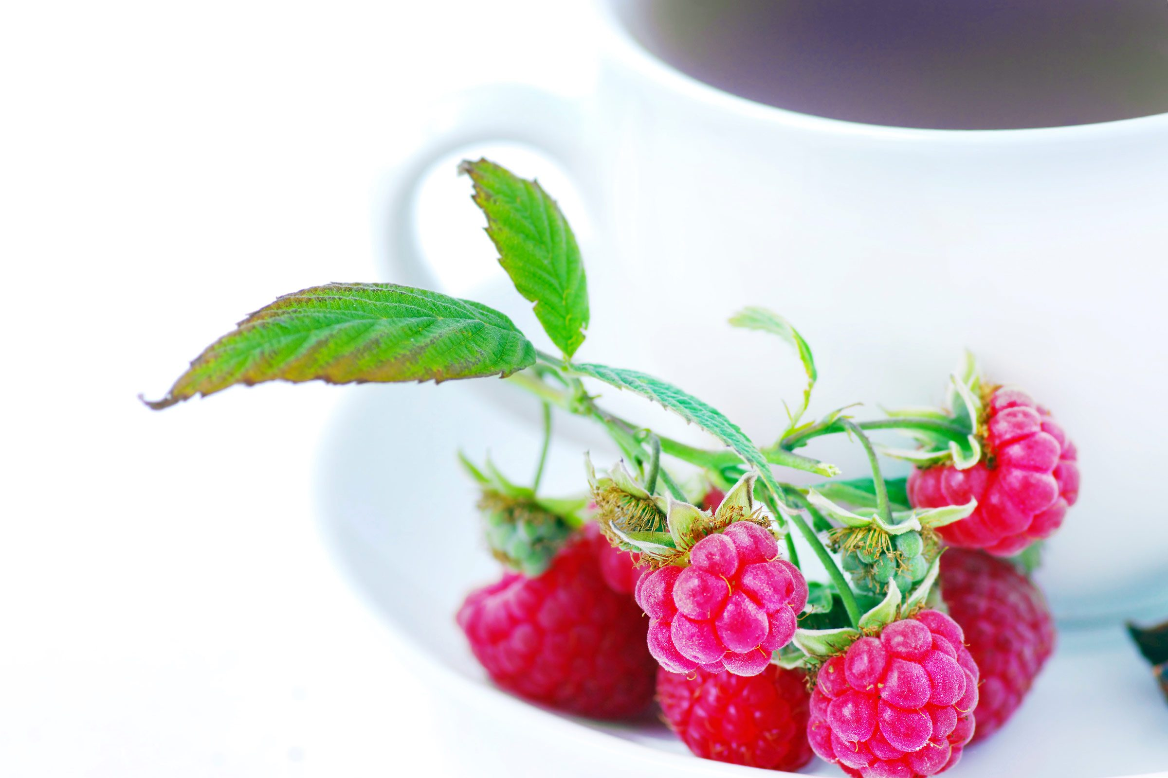 Sore throat remedy: Raspberry tea