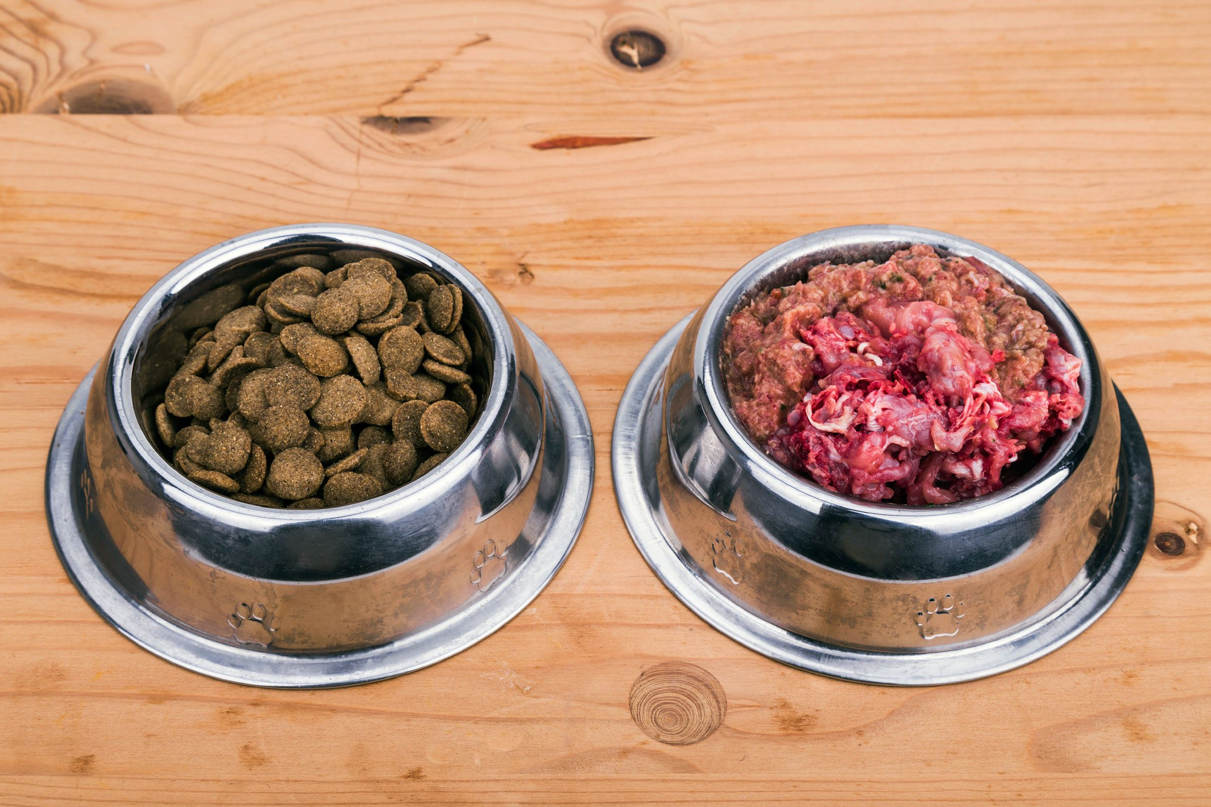 Don't feed your pet a raw-food diet
