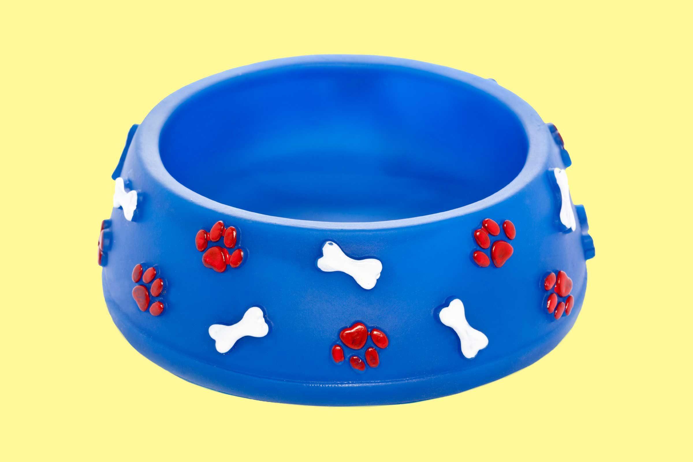 Can I Use Regular Bowl For Dog Food