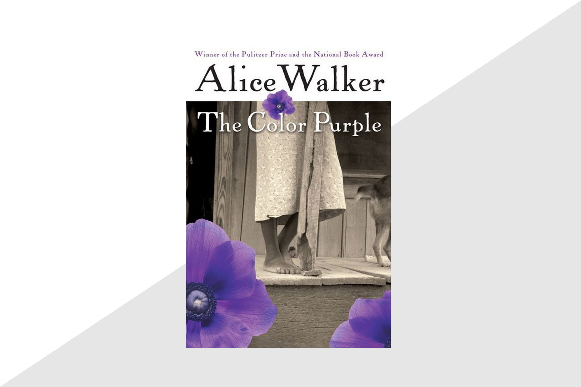 the color purple thesis The color purple thesis - if youre writing a phd thesis, the future prospect would be the examiners assume they have an understanding of the typical field of research.