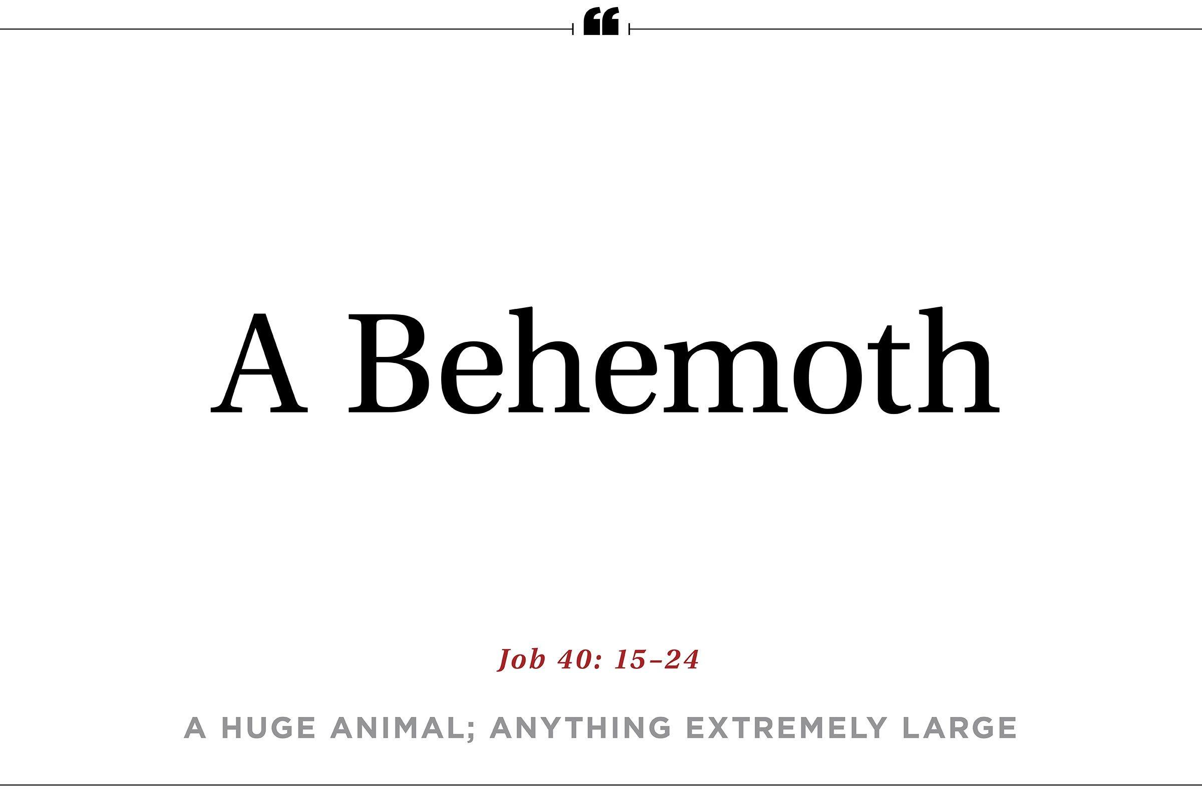 """Behemoth"""