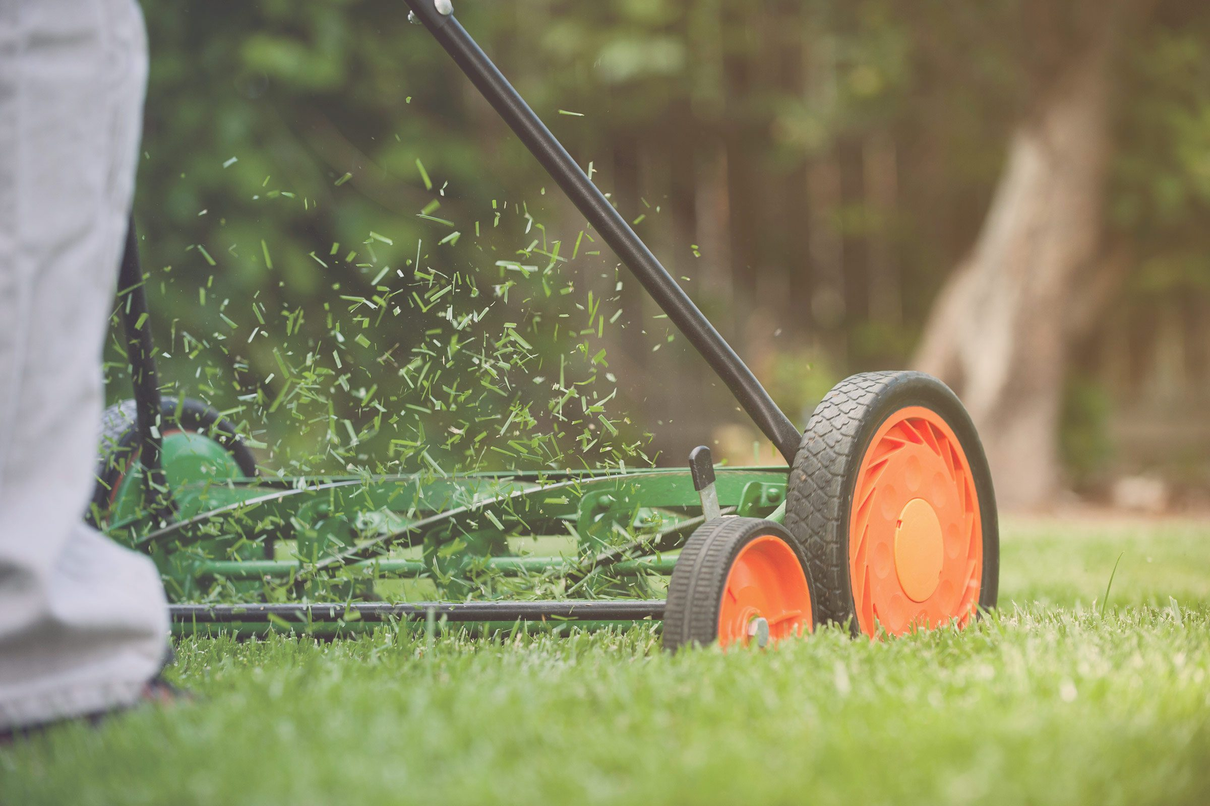 13 Things Your Landscaper Won T Tell You Reader S Digest