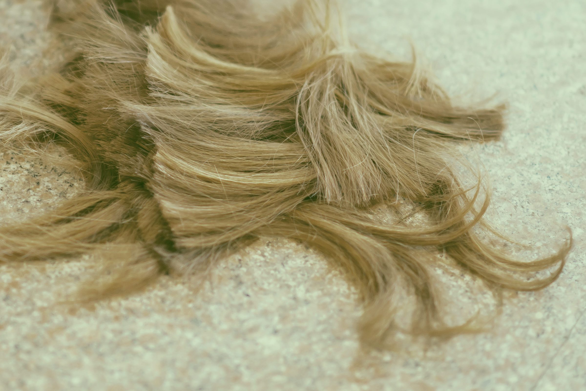 Human or hog hair, or duck feathers