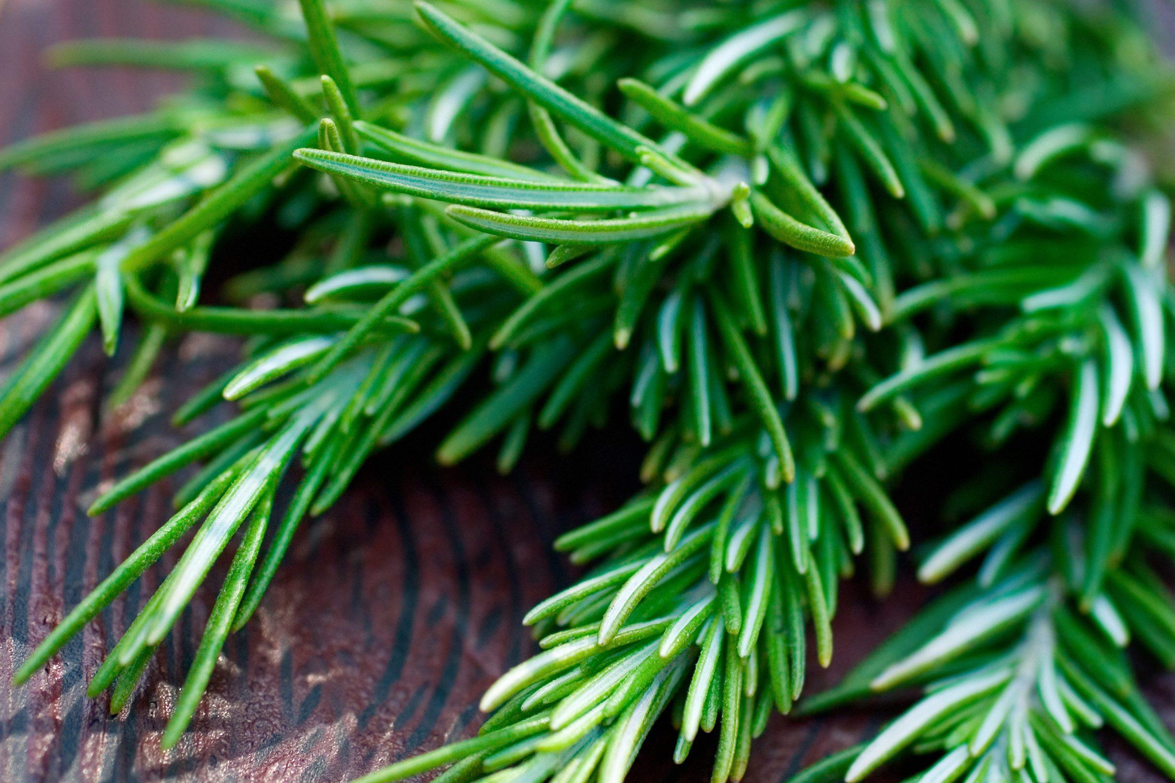 3. Rosemary