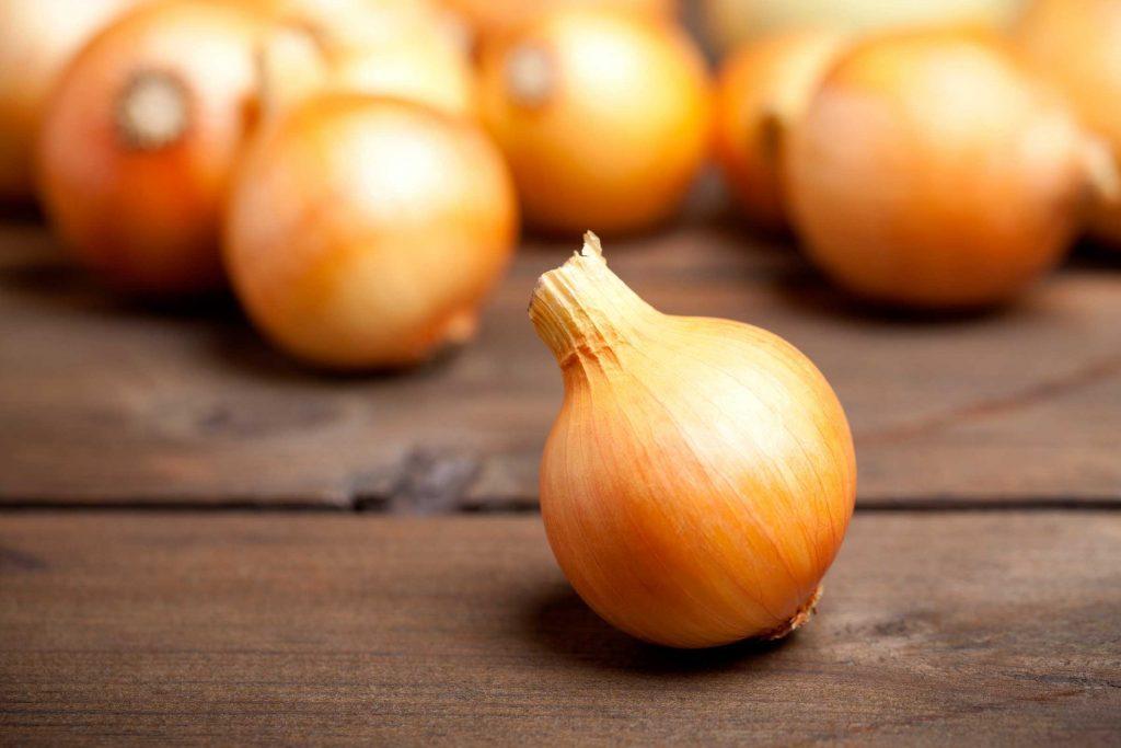 05-foods-bug-bites-onions