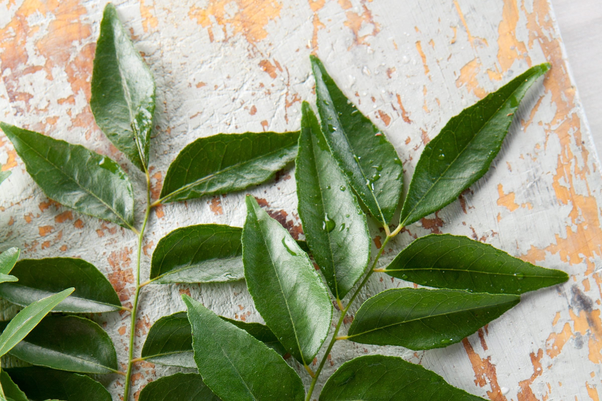 6. Curry leaves