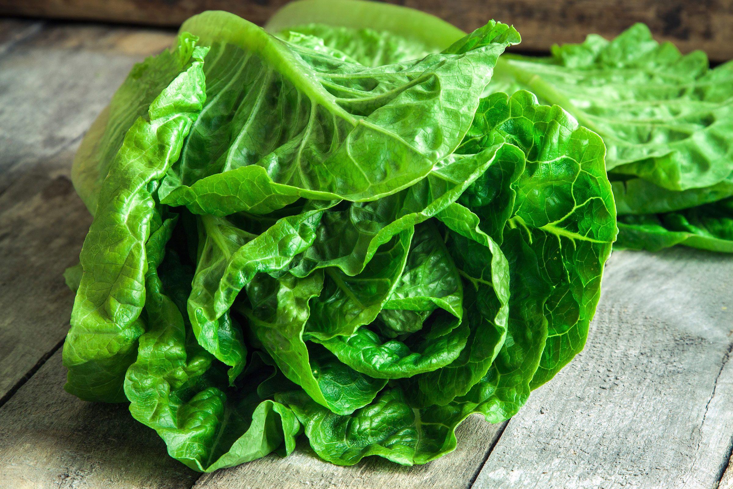 17. Brown-Bag Your Lettuce