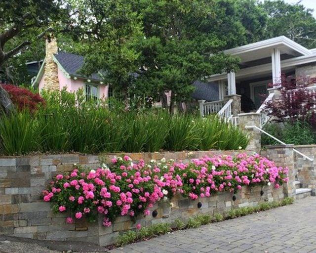 12. Cedar Mulch (3 Cu Ft Bag)   Green Side Up Garden Center