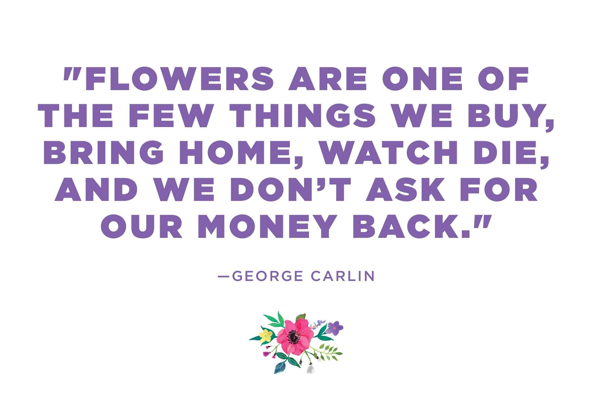 flower quotes 12 calming thoughts on flowers reader u0027s digest