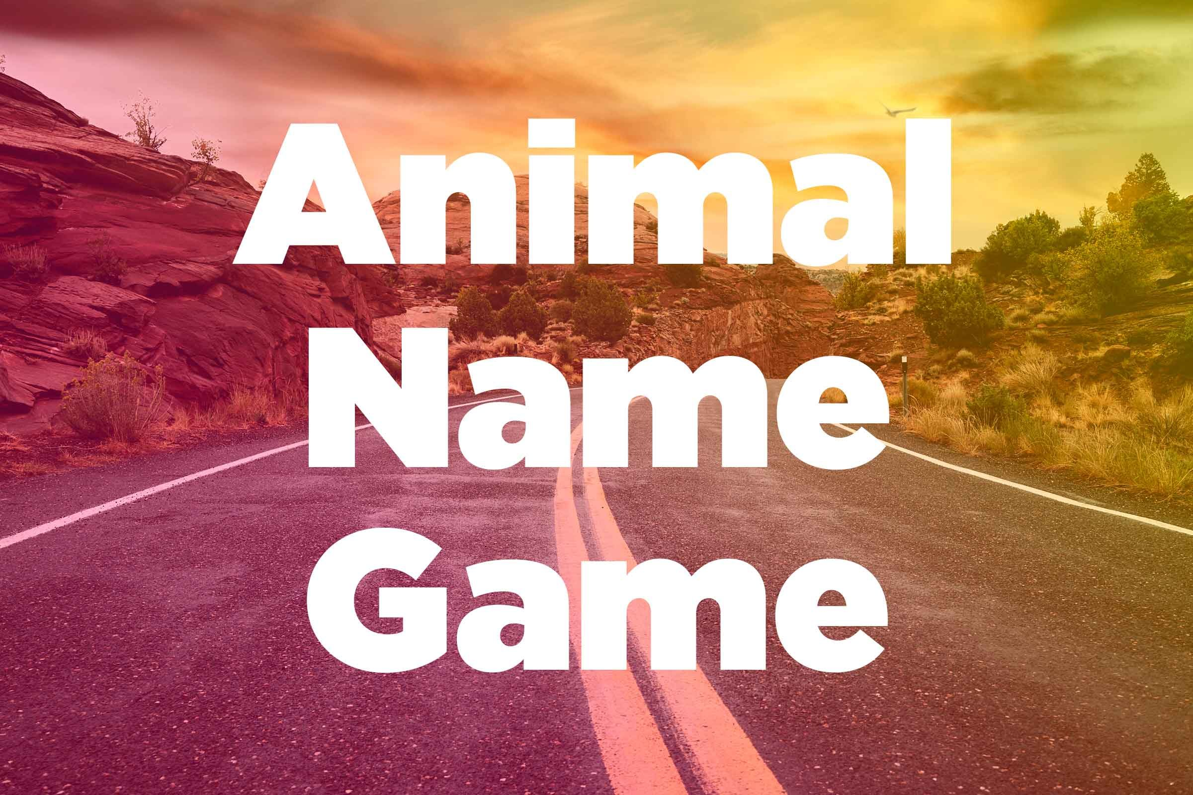 the best car game if you like animals