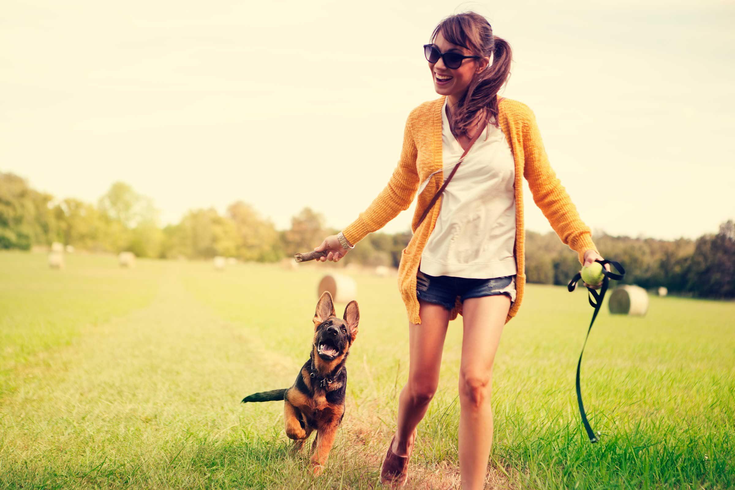 Pooch or kitty: secret fitness instructors