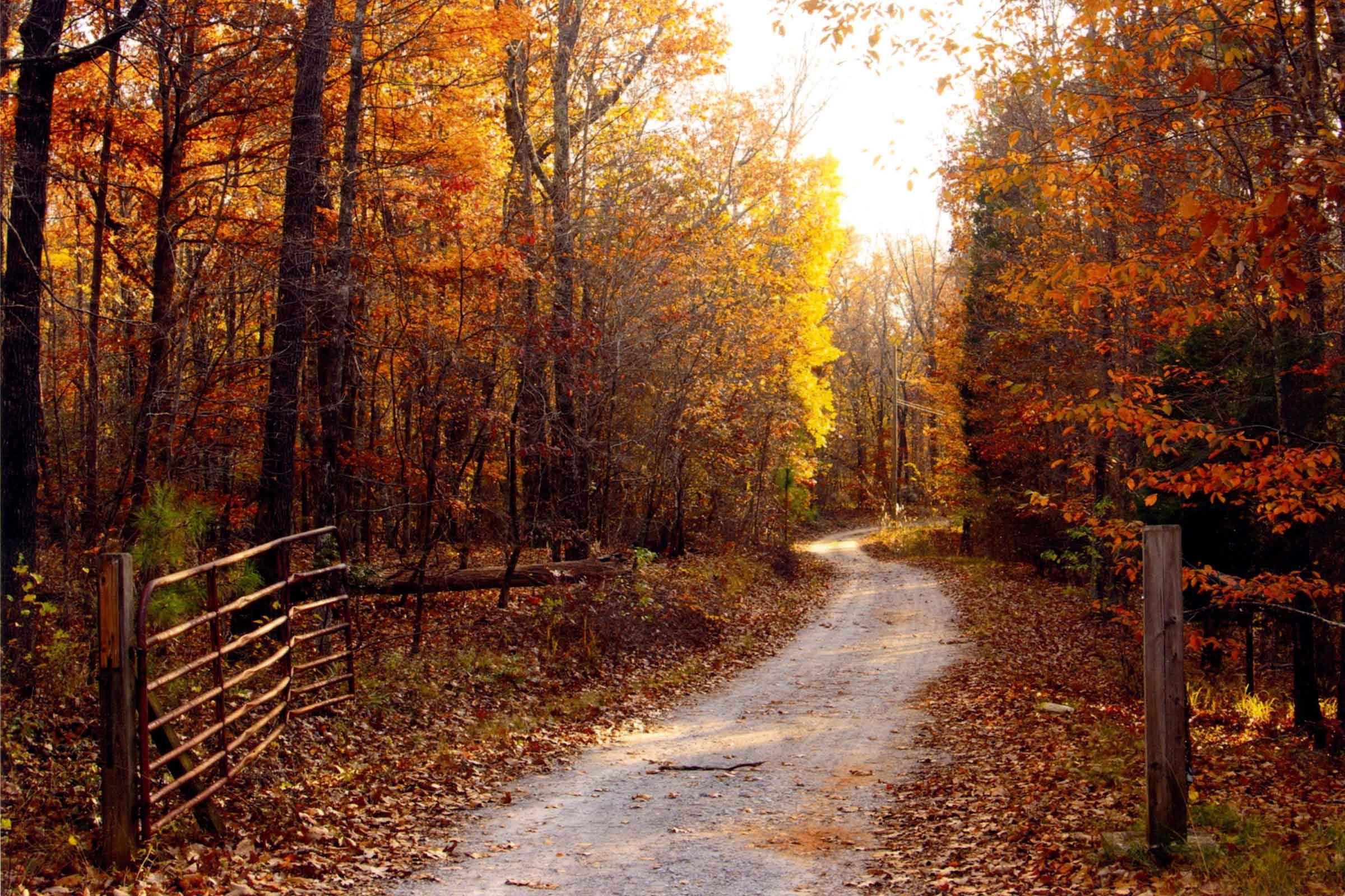 fall autumn america country waller alabama across stunning special pumpkin picking apple digest reader magazine