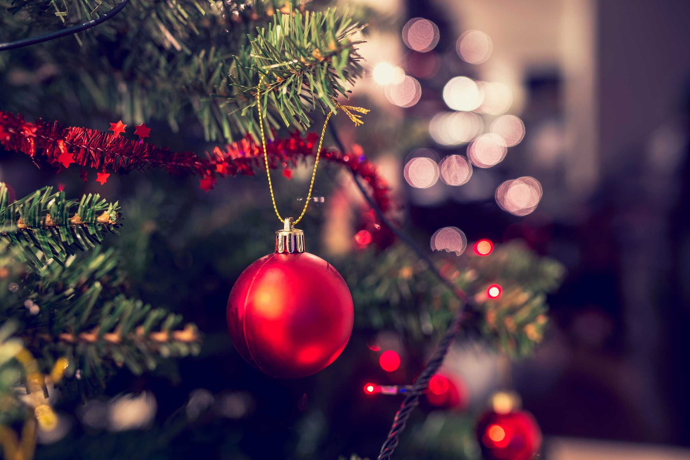 What day to take christmas decor down - Real Christmas Trees Don T Need Feeding