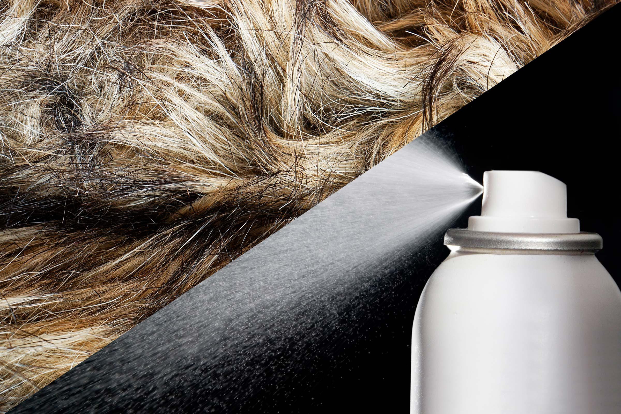 Clean up pet fur