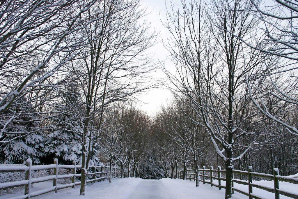 Essay on my favourite season winter