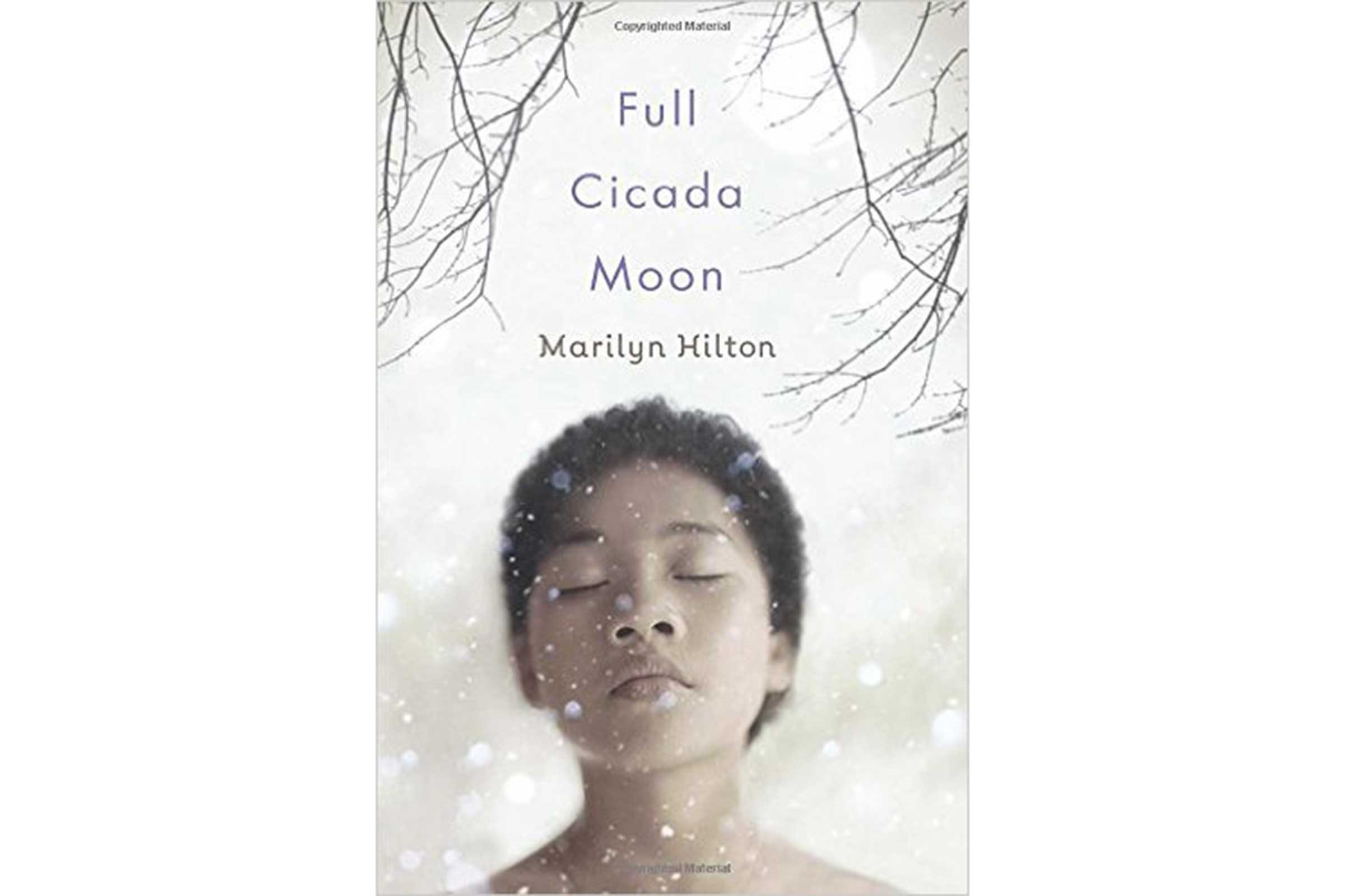 'Full Cicada Moon' by Marilyn Hilton