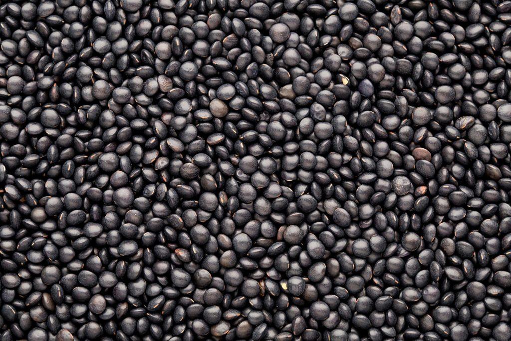 blacklentils