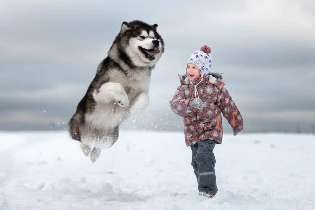 07_Little-Kids-and-Their-Big-Dogs-COVER-HI-RES