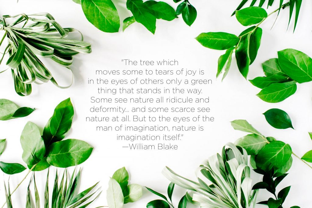 Nature Quotes That Inspire Love Of The Earth Reader S Digest