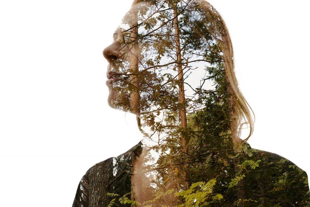 April-2017-FEA-brain-nature-01-Christoffer-relander