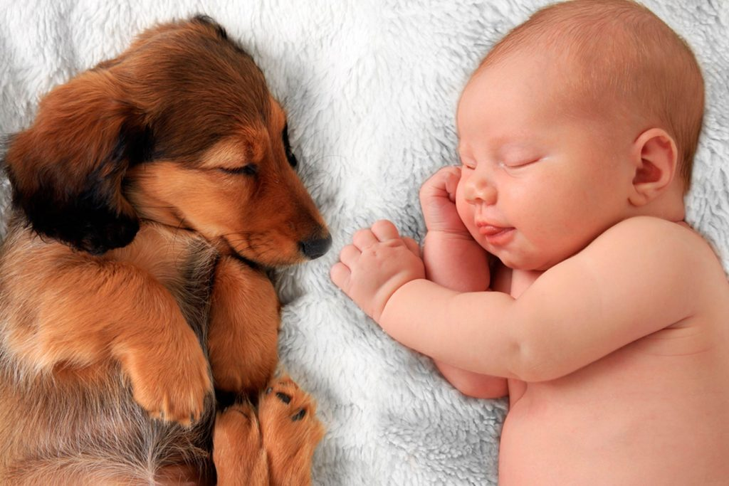 This-One-Move-Lowers-Risk-of-Allergies-and-Obesity-in-Babies-(Hint--It-Barks)