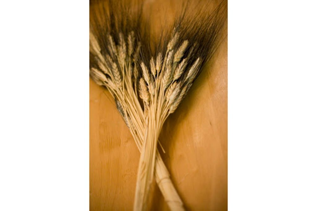 05-wheat-Wedding-Bouquets-that-Don't-Need-Flowers-to-Be-Gorgeous
