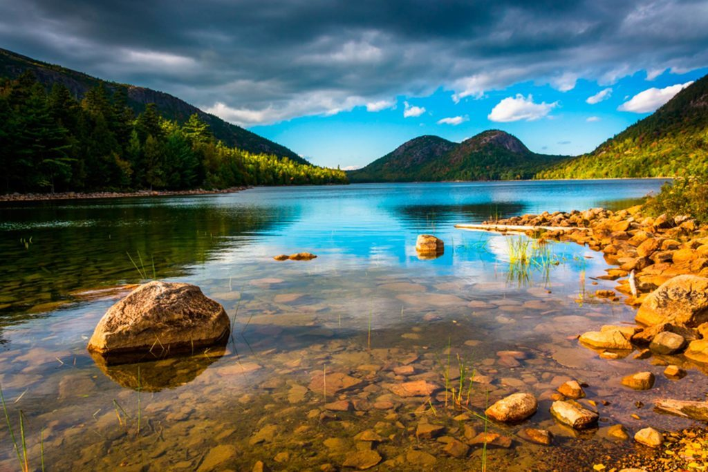 Amazing-Pet-Friendly-National-Parks-To-Visit-This-Summer-with-Your-Dog