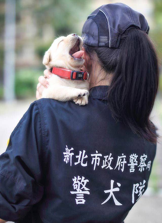 02-These-Photos-of-the-World's-Cutest-K-9-Team-Will-Make-You-Want-One,-Too