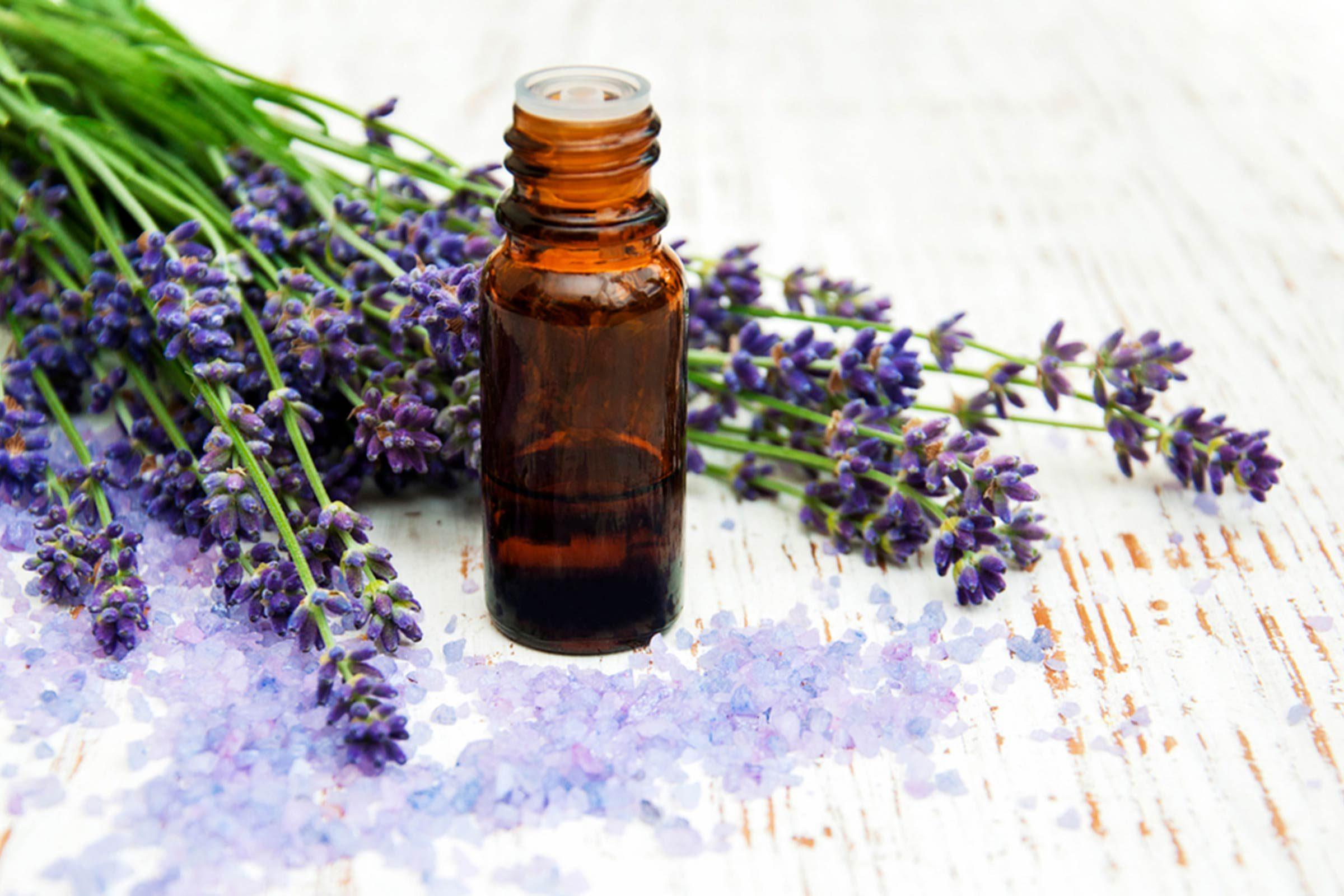 Huiles essentielles: La sauge sclarée pour guérir le rhume