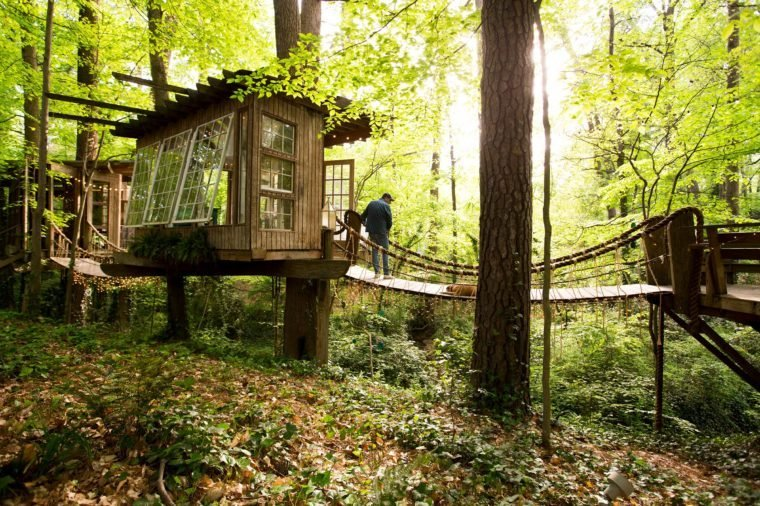 03-step-inside-the-tree-house-thats-the-most-popular-listing-on-airbnb