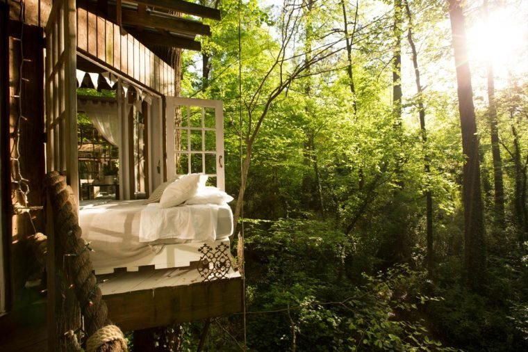 06-step-inside-the-tree-house-thats-the-most-popular-listing-on-airbnb
