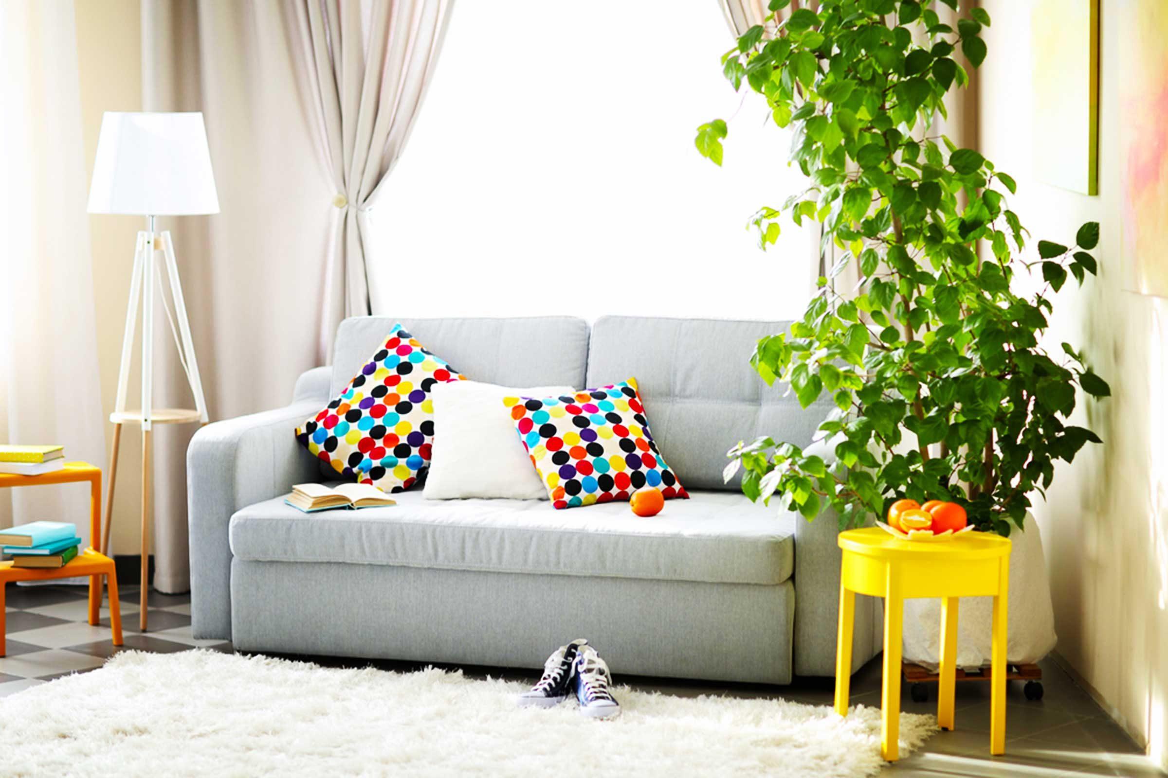 Ajoutez une touche de couleur à votre maison