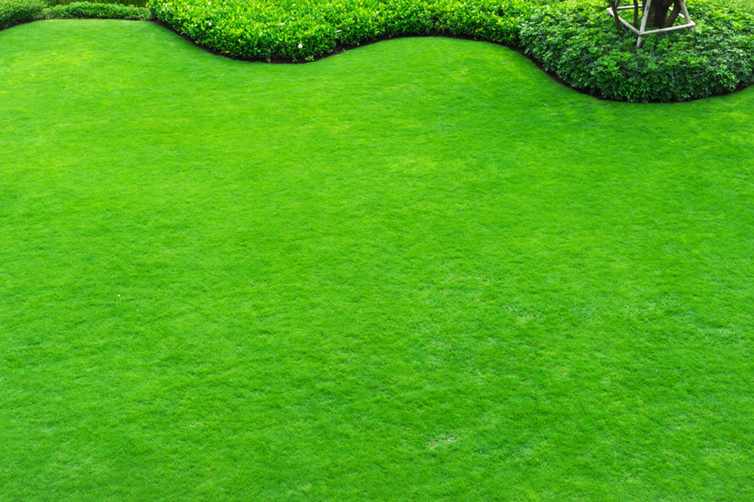 Embellissez un peu le jardin et la maison