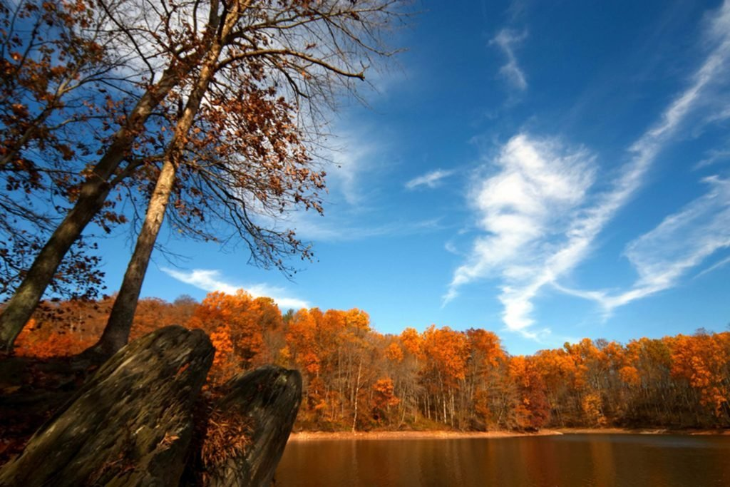 Best-Road-Trips-to-See-Stunning-Fall-Foliage