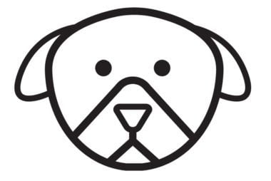 dogicon