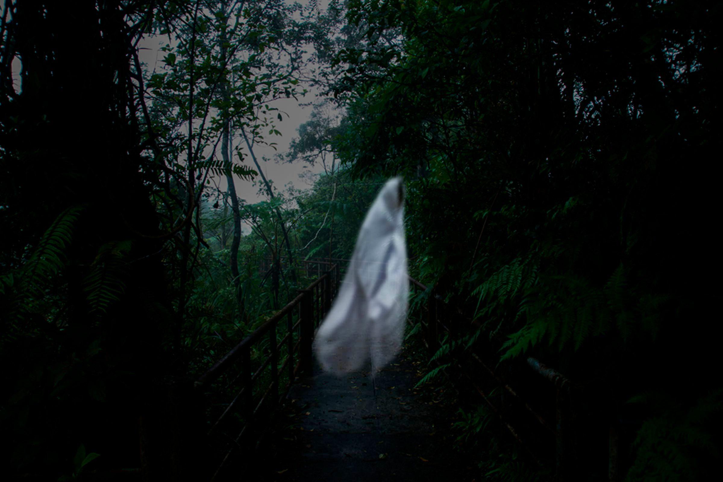 Voir des fantômes