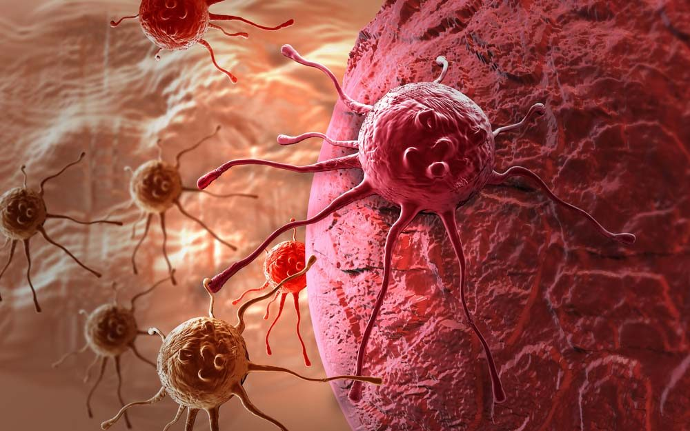 Sugar Could Make Cancer Cells Multiply, Study Says   Reader's Digest